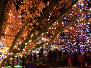 Wilmette-tree-lighting